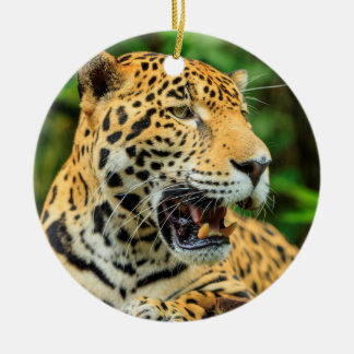 Jaguar shows its teeth, Belize Ceramic Ornament