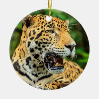 Jaguar shows its teeth, Belize Round Ceramic Ornament