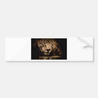 Jaguar Water Stalking Eyes Menacing Fearsome Male Bumper Sticker