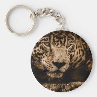 Jaguar Water Stalking Eyes Menacing Fearsome Male Keychain