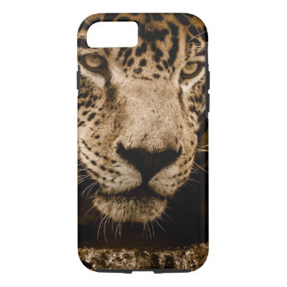 Jaguar Wild Animal Big Cat Face Eyes Photograph Case-Mate iPhone Case