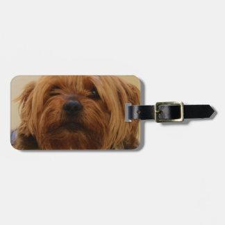Jake The Yorkie Terrier Luggage Tag