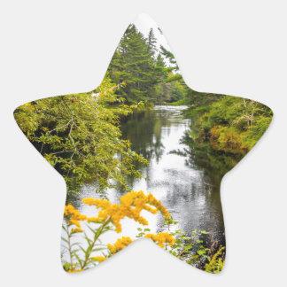 Jakes Falls Star Sticker