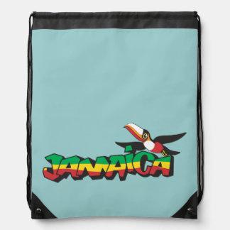 Jamaica Parrot in Three Colors Cinch Bag