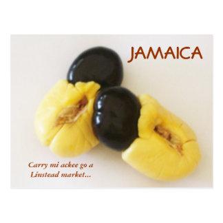 Jamaican Ackee Postcard