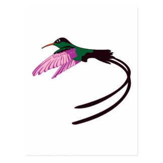 Jamaican Bird Postcard