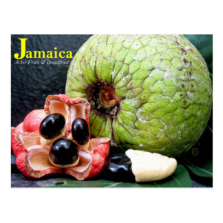 Jamaican Breadfruit and Ackee Fruit 2k17 Postcard