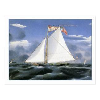 James Bard American Eagle Postcard