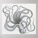James Johonnot - Octopus Poster