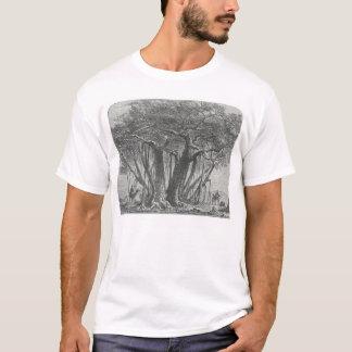 James Johonnot - The Banyan Tree T-Shirt