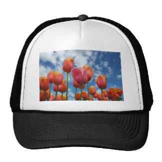 Janesville, Wisconsin Trucker Hat
