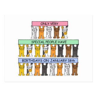 January 18th Birthday Cats Postcard