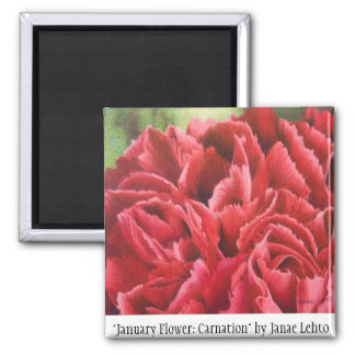 """January Flower: Carnation"" Magnet"