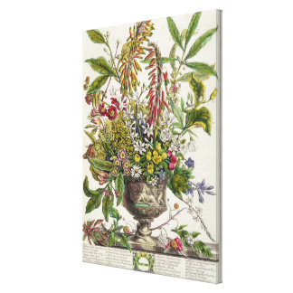 January, from `Twelve Months of Flowers' Canvas Print