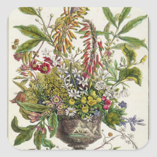 January, from `Twelve Months of Flowers' Square Sticker