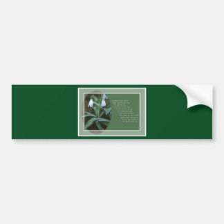 January Snowdrop (With Border) Bumper Sticker