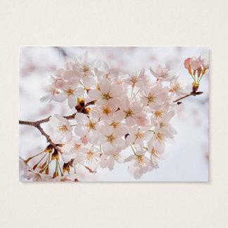Japan Cherry Blossom Business Card