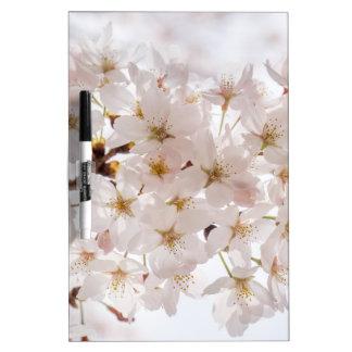 Japan Cherry Blossom Dry Erase Boards