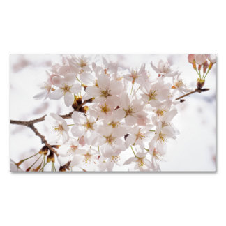 Japan Cherry Blossom Magnetic Business Card