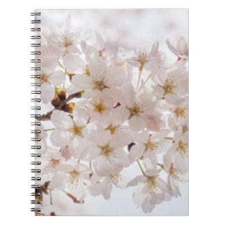 Japan Cherry Blossom Notebook