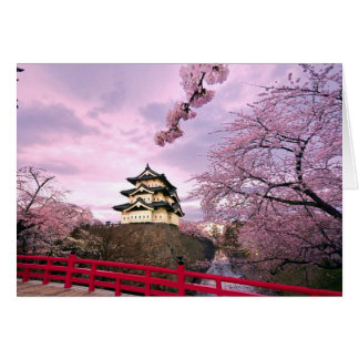 Japan Cherry Blossoms Card