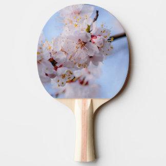 Japanese Apricot Blossom Ping-Pong Paddle