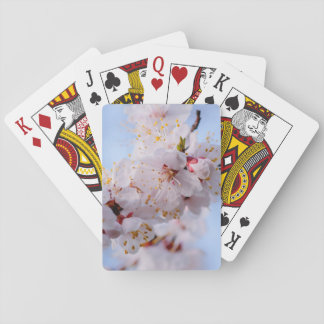 Japanese Apricot Blossom Poker Deck