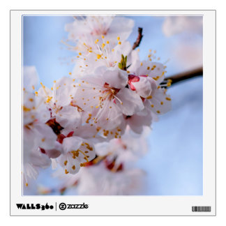 Japanese Apricot Blossom Wall Decal