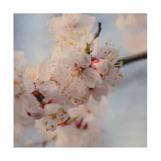 Japanese Apricot Blossom Wood Wall Decor