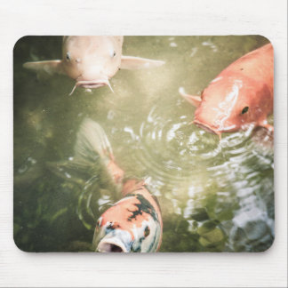 Japanese Carps Mouse mat