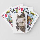 Japanese cat card decks