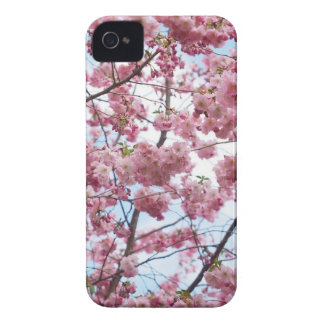 Japanese Cherry Blossom iPhone 4 Case