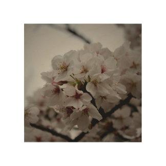 Japanese Cherry Blossoms Wood Wall Art
