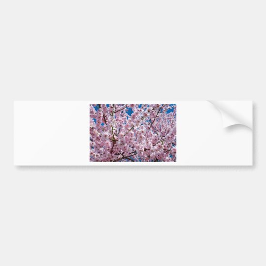 Japanese cherry Flower Bumper Sticker