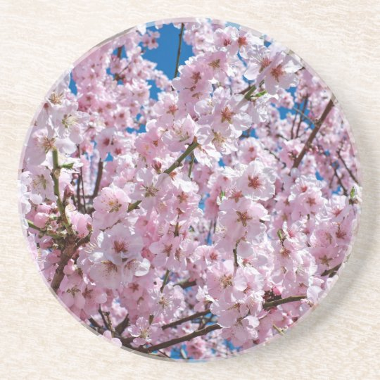 Japanese cherry Flower Coaster