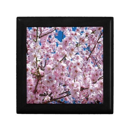 Japanese cherry Flower Gift Box