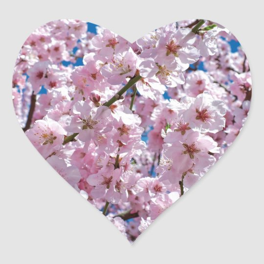 Japanese cherry Flower Heart Sticker