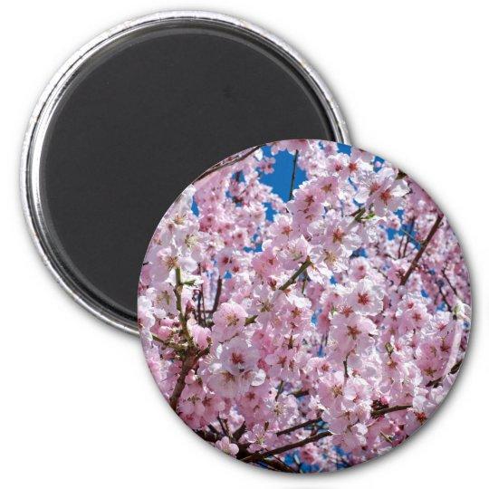 Japanese cherry Flower Magnet