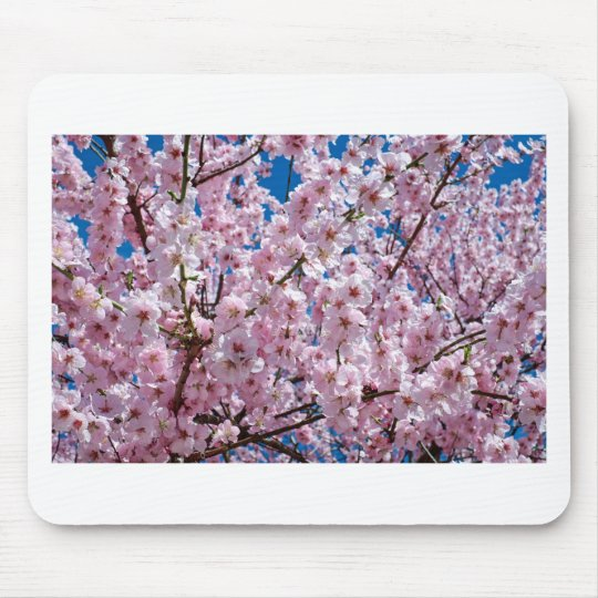 Japanese cherry Flower Mouse Pad
