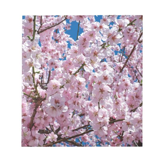 Japanese cherry Flower Notepad