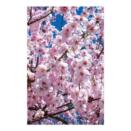 Japanese cherry Flower Stationery