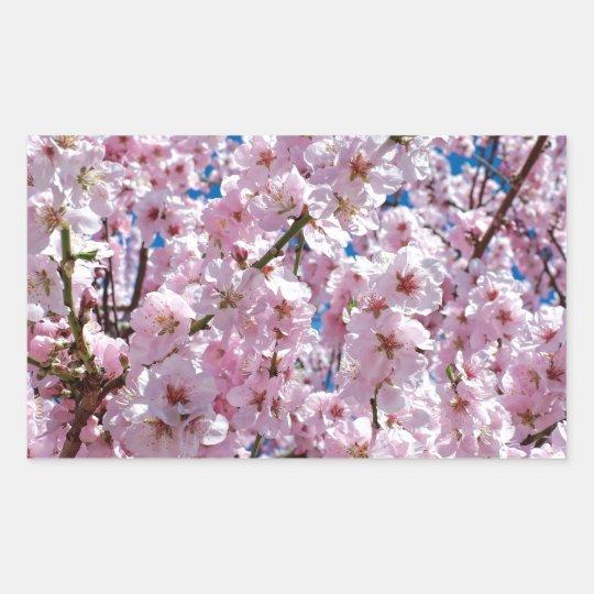 Japanese cherry Flower Sticker