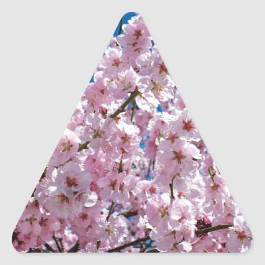 Japanese cherry Flower Triangle Sticker