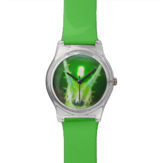 Japanese emperor butterfly caterpillar watch
