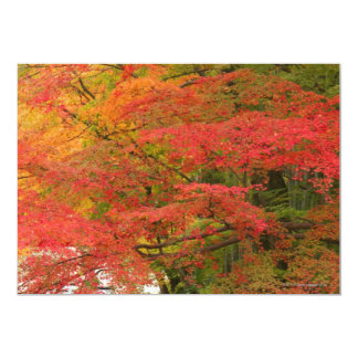 Japanese Fall Foliage Card