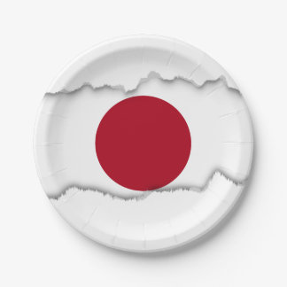 Japanese Flag Paper Plate