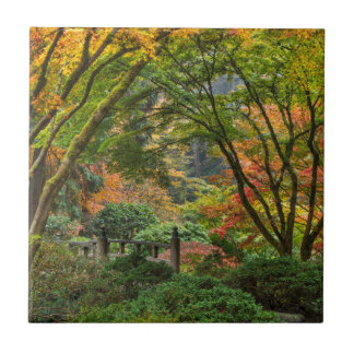 Japanese Gardens In Autumn In Portland, Oregon 4 Tile