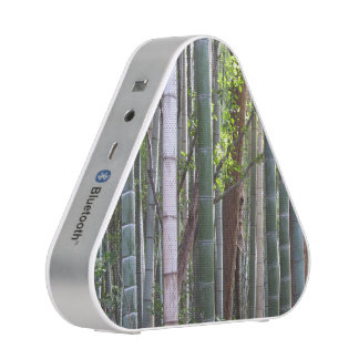 Japanese Giant Bamboo Forest, Sagano, Kyoto, Japan Blueooth Speaker