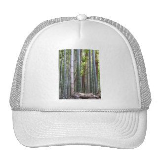 Japanese Giant Bamboo Forest, Sagano, Kyoto, Japan Trucker Hat