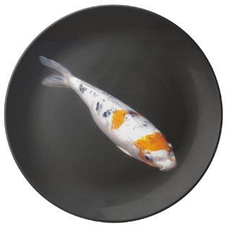 Japanese Koi Carp. Plate
